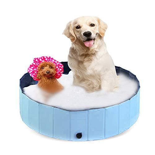 PET SPPTIES Badewanne Schwimmbad Faltbar Pet Play Katze…   00781573641943