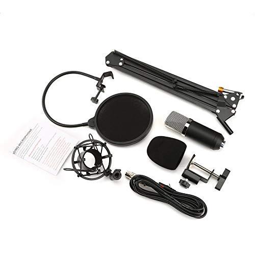 Eduton NW-700 Professional Studio Rundfunk Recording-Kondensator-Mikrofon-Kit (Film Kit Mikrofon)