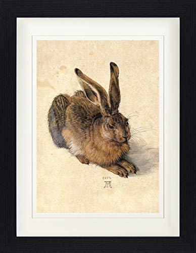 1art1 113747 Albrecht Dürer - Junger Feldhase, 1502 Gerahmtes Poster Für Fans Und Sammler 40 x 30...