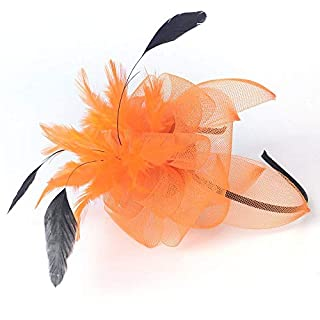 MNII Women Fascinator Headwear Hats Feather Card Issue Cocktail Party Hats Bridal Kentucky Derby Headband Gift Wedding Party,Orange