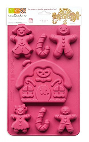 Unbekannt Scrapcooking 3144Lebkuchen-Familie, Backform aus Silikon, Rosa, 31,5x 17,5x 1,5cm - Gefrierschrank Rezepte