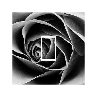 black and white rose x 2 light switch sticker All Personalised Gifts