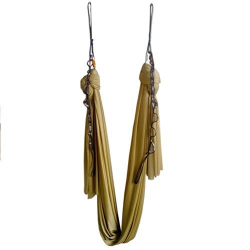 Wellsem (5m / set) Elastica Pilates Yoga Yoga Swing Aerea Amaca Con Moschettone e margherita catena (oro)