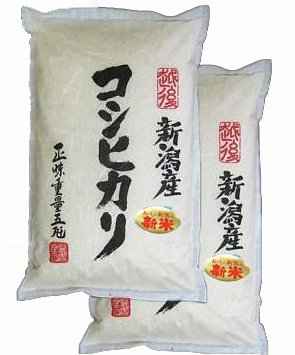 【精米】 新潟県産 白米 コシヒカリ 10kg(5kg×2袋)新潟辰巳屋 (産地直送米)28年産