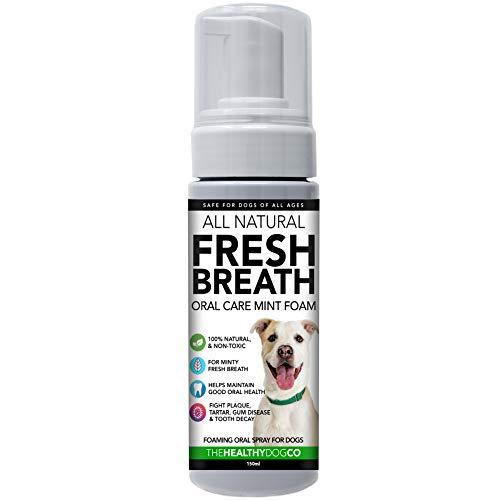 100{1b4cbce433744acead445cc795756d0891edb7593d2fe134b2ed09d27dddd4a1} Natürlicher Atemfrischer Schaum und Wasserzusatz für Hunde | Schäumende Mundhygiene | Wirksame gegen Mundgeruch und Ablagerungen | Einfacher als Hundezahnpasta | Praktisch im Pumpenformat
