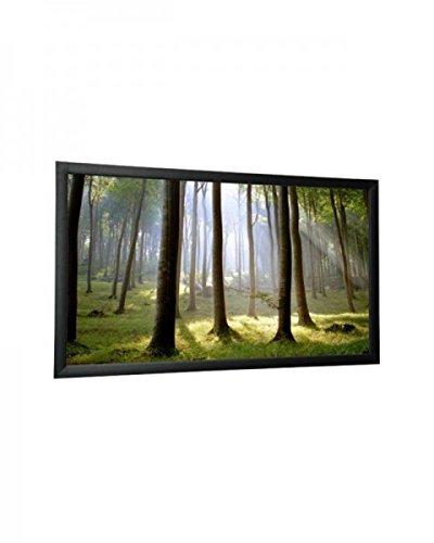 WS-S-CinemaFrame 16:9 300x169 1.4 Gain Diamond (Gain Frame)