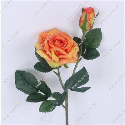 Exotique Miniature Bonsai Fleur Rose Rosas Graine Bricolage jardin et maison embellissant de purification d'air 110 Pcs/Sac 13