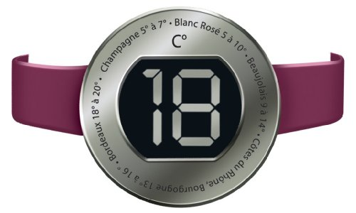 Wpro Digitales Wein-Thermometer DWT001