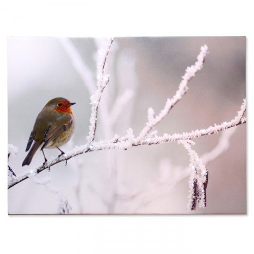 Noma LED Scène d'hiver Toile murale – Robin