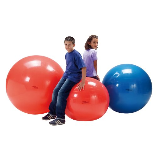 Gymnic - Balle Ballon de Fitness Physio Swiss Ball - Gym Grossesse Ballon Gymnastique - Sport Yoga Pilates Renforcement Musculaire Musculation
