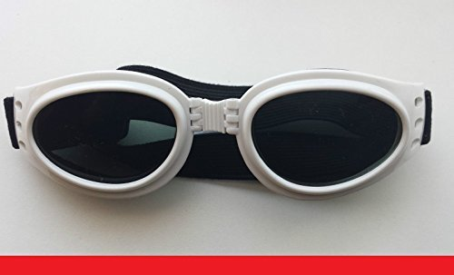 Bastekrace Nuevo hermoso barata Gafas de sol para media o perros grandes - BLANCO XXL