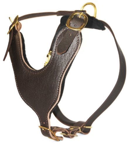 Dean-Tyler-Basic-Harness-with-Solid-Brass-Hardware-with-a-Handle-Brown-Extra-Large