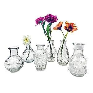 itsisa Glasvase Vintage, Klarglas Vase, H: 11,5-14,5 cm, 6er Set – schöne, kleine Vase Landhaus Stil zur Tischdekoration