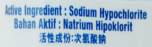 Clorox Liquid Bleach Regular, 1 L