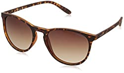 Polaroid Polarized Phantos Unisex Sunglasses - (PLD 6003/N/S V08 54LA|54|Brown Color)