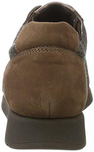 Aerosoles Damen Better Off Mix Terenz Sneaker Braun (Stone)