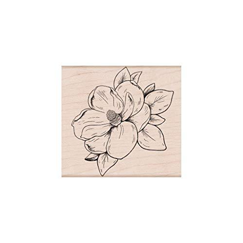 Stempel Holz 'Hero Arts' Magnolia Blumen -