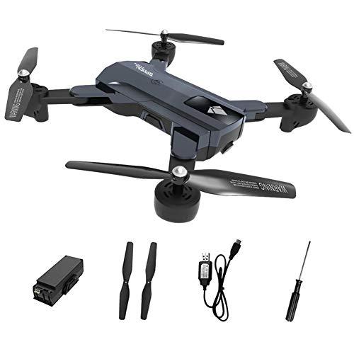 gaeruite F196 RC cuadricóptero Drone Aircraft Toys, fotografía de Gesto de posicionamiento de Flujo óptico SIGA Quadcopter de Control Remoto de Cuatro Ejes Plegable, 2.4 GHz 2200mAh