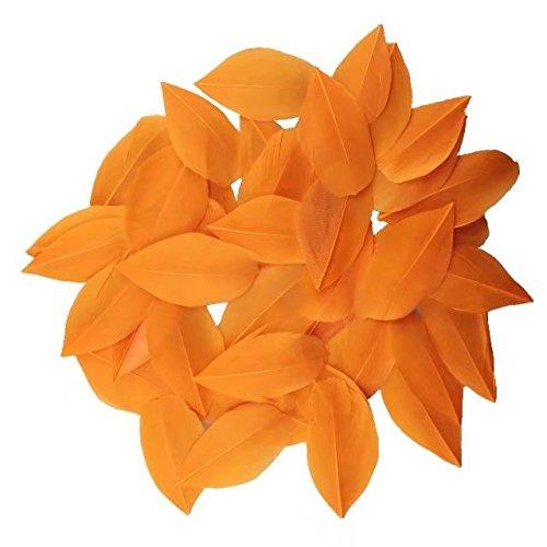 Exquisite Leaf Gans Federn für Heimwerker Kunst, Home Party oder Hochzeit 5,1–8,1cm (5–8cm), Orange (Halloween Orange County)