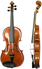 SG Musical Handcrafted Solid Wood Acoustic Violin with Carrying Case,Rosin(SGHEWW06)