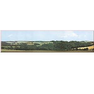 Auhagen 42.512,0 - extensión del fondo Wolkenstein / Erzgebirge, longitud total 198 x 47 cm, colorido