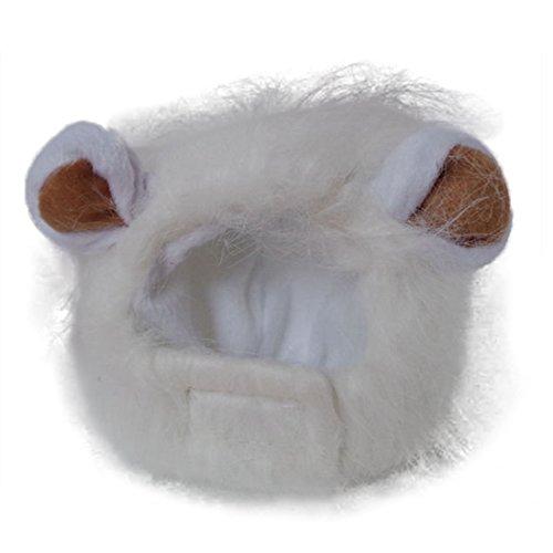 Kostüm Haustier Katze Löwenmähne Für - Löwe Cosplay Perücke Löwen-Kostüm Katze Hut Neuheit Löwenmähne Kopfbedeckung mit Ohren für Karneval, Halloween, Partys, Feste Haustier Spielzeug Zubehör für Kleine Hunde Welpen (weiß)