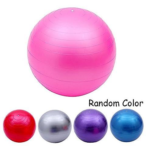 Ezyoutdoor Yoga Fitness Ball 65cm Utility Yoga Balls Pilates Balance