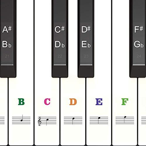 Klavier Keyboard Aufkleber für 54/61 / 76/88 Tasten Noten [ Gratis Ebook ] Piano Sticker für weiße & schwarze Tasten Transparent und abnehmbar (Farbe)