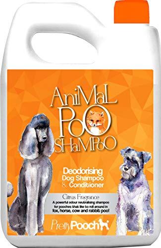 Pretty Pooch® Fox Poo Hundeshampoo & Conditioner für riechende Hunde – 2 Liter Zitrusduft – Sensitive Deodorierende Hundeshampoo – beseitigt Fox Poo & andere Gerüche