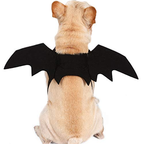 - Eine Große Halloween Kostüm