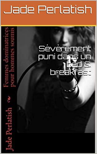 Couverture du livre Sévèrement puni dans un bed & breakfast