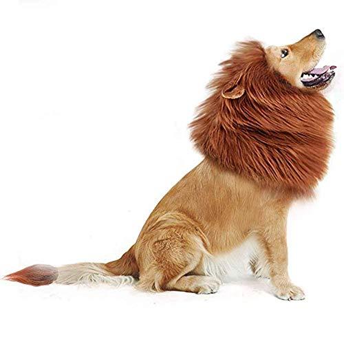 Snow Island Schneeinsel Haustierkostüm Löwenmähne Perücke Ohren für große Hunde Halloween Kleidung Fasching Festival Kostüm Haustier Schal Kragen (Hunde Halloween Kragen Kostüm)