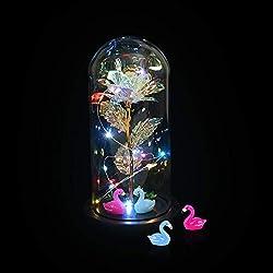 Aokebeey Galaxy Rose mit Led Licht im Glas, Romantische Golden Künstliche Rose Dekoration Geschenk für Valentinstag,Geburtstag,Hochzeit,Muttertag,Jubiläum(Flamingos)