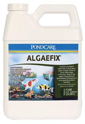 api-pondcare-algaefix-controls-water-algae-pond-treatment-cleaner-32oz-bottle