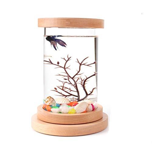 BEITAI Mini Desktop ökologische Flasche Aquarium Bettas Zylinder (Farbe : As shown) -