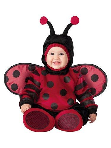 tüm - 6-12 Monate (Lady Käfer Kostüm)