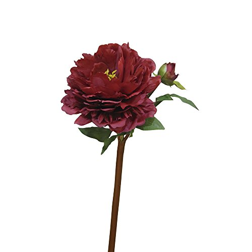 Home-Artelore 0113078 Pivoine Rouge
