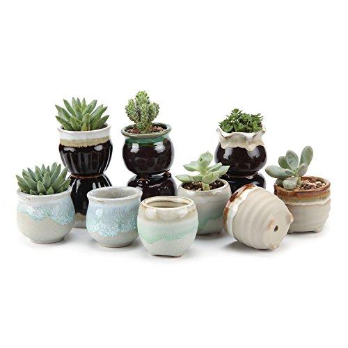T4U 6.5CM Sukkulenten Töpfe Kaktus Pflanze Töpfe Mini Blumentöpfe Grau&Schwarz Basis Fließend Glasur Serie 12er Set