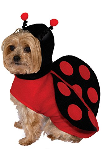 Lady Bug Pet Costume Small