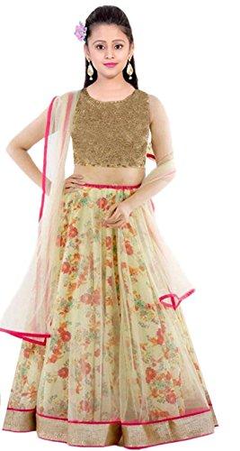 Clickedia Kids wear Girls Net Lehenga Choli/ Chaniya Choli for Navratri and Festive - traditional wear ( 8-12 yrs)