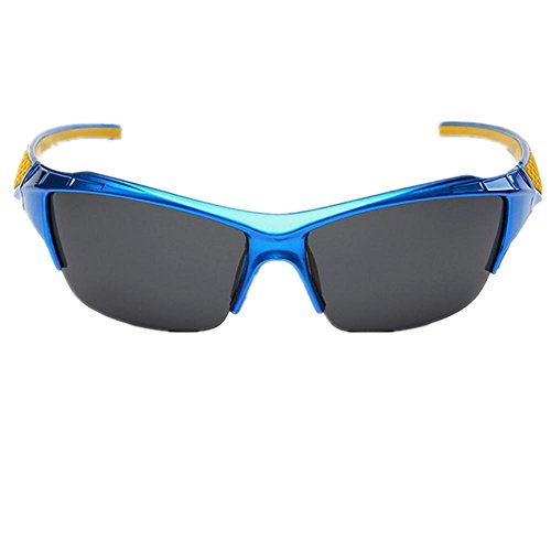 brille Großhandel Sport Sektion Reitbrille , blue (Aviator Sonnenbrille Großhandel)