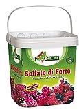 AL.FE Solfato di Ferro antimuschio rinverdente Microgranulare per Piante e Fiori kg.5