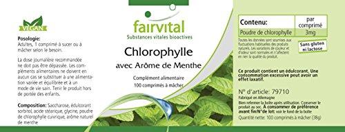 Chlorophyll Kautabletten mit Minzaroma - Großpackung für 100 Tage - VEGAN - 100 Kautabletten - 6
