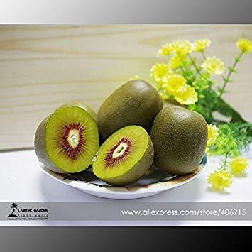 (Visa Store E: 2018 Neuheiten !!100% True Variery Mini Große Kiwi Frucht Heirloom Chinesische Stachelbeere Obst Samen, Professionelle Pack, 50 Samen/Pack E3373 - (Farbe E))