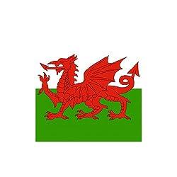 Flag Wholesaler The Men's Wales Bandana, Multi-Colour, Medium by The Flag Wholesaler