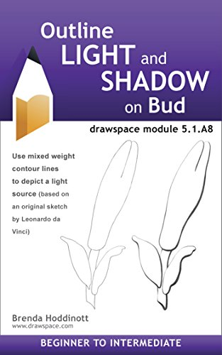outline-light-and-shadow-on-bud-drawspace-module-51a8-english-edition