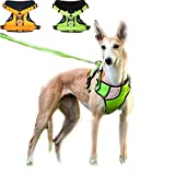DINGG No Pull Dog Vest Harness Reflective Stitching Sesure Night Visibility, Outdoor Adventure Big Dog Harness Harness Perfect Match Puppy Vest 4Size,Green,L