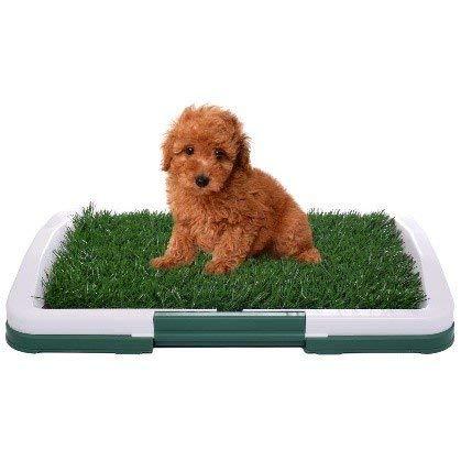 iPawde Hundetoiletten Urin Trainer Gras Matte Töpfchen Auflage Innenhaus Abfallbehälter Toilette für Haustiere