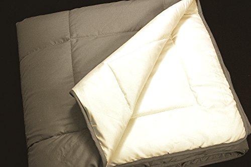 RELLENO NÓRDICO BICOLOR COLORES REVERSIBLE 200gr (150x220 para una cama de 90, Bieg Medio/Crudo)