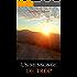 Un mensonge de trop: Nouvelle (French Edition)